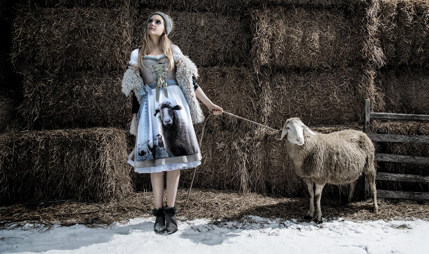 Winter-Schaf-Ohne Beschriftung